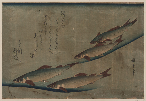 Ando Hiroshige. Giclee. River Trout - 'Ayu Zu' 1841-4 Hiroshige. Giclee. Sea off Satta. From series '36 views of Mount Fuji9th Century Japanese Woodblock Prints - Archival 'Giclee' prints on 'washi' paper